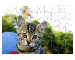 Puzzle 70 pièces à personnaliser avec une photo - Format paysage